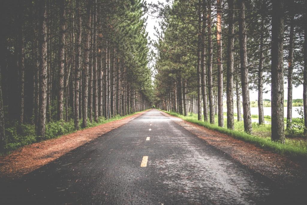 Take the social media road platform less traveled